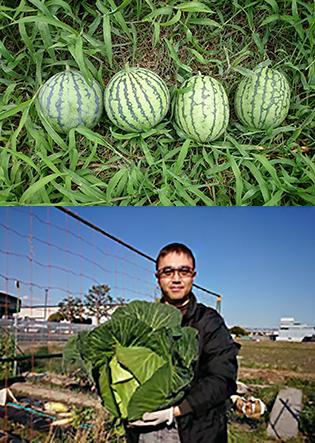 【SEMBAサロン】58th「野菜作りが楽しい!プロダクトデザイナーがハマったワケ」岩田浩司氏